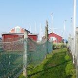 Juelsminde (DK)